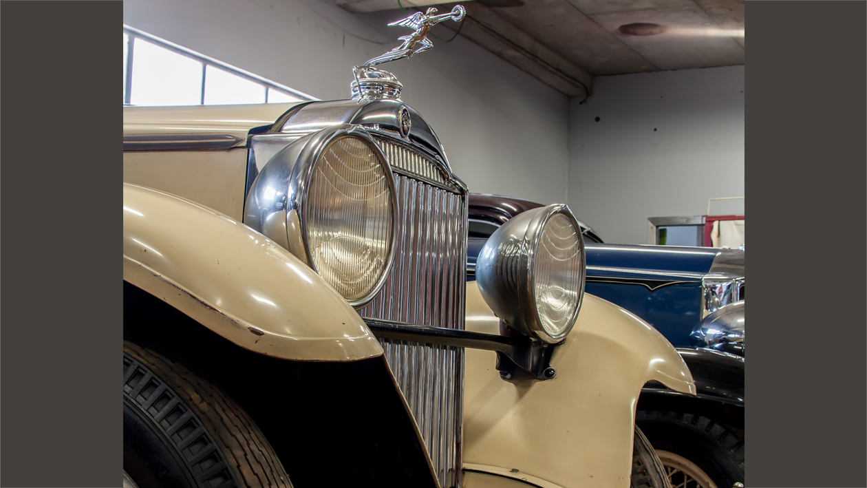 The Packard Collection